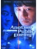 Another Public Enemy (DVD)